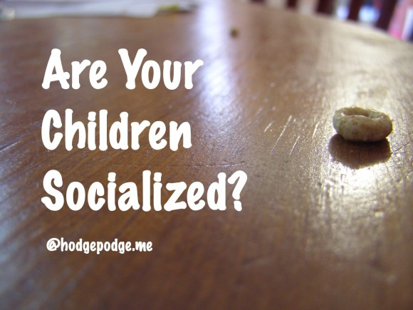 Are your children socialized?