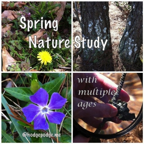 Spring Nature Study with Multiple Ages