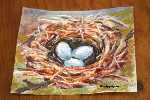 original bird's nest chalk pastel by Lucia Hames