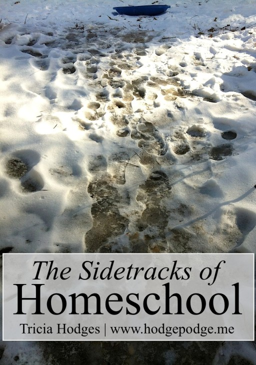 The Sidetracks of #Homeschool www.hodgepodge.me