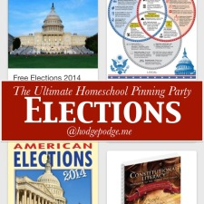 Government and Elections Resources at The Ultimate Homeschool Pinning Party