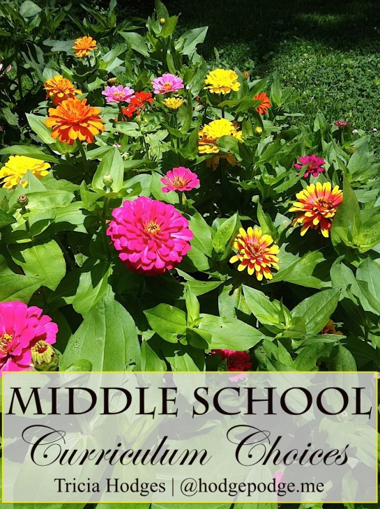 Middle School Homeschool Curriculum Choices