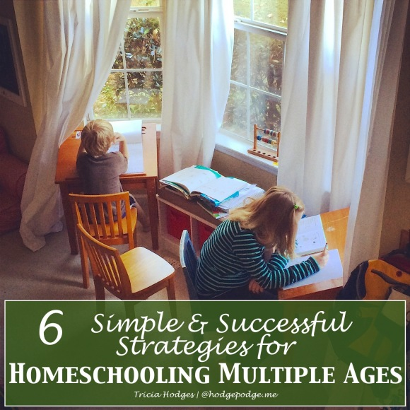 6 Simple Successful Strategies for Homeschooling a House Full