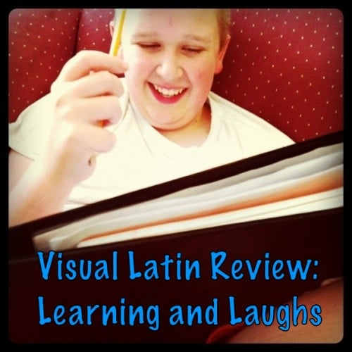 Visual-Latin-Review-500x500