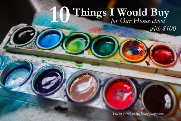 10 Things I Would Buy For Our Homeschool with $100 to Spend at Amazon